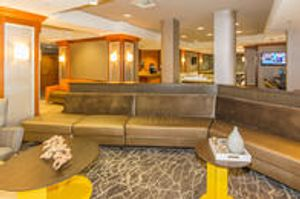 Image 5 | SpringHill Suites by Marriott Tampa Westshore Airport