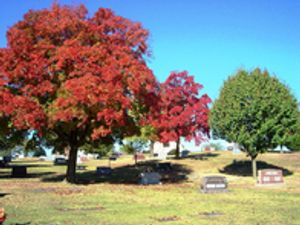 Cemetery grounds.
