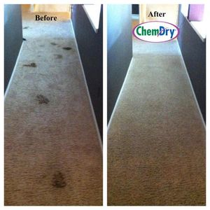 Chem-Dry of Michiana Carpet Cleaning. Green cleaning that removes 98% allergens and 89% bacteria.