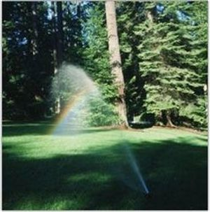 Image 4 | Advanced Irrigation Systems