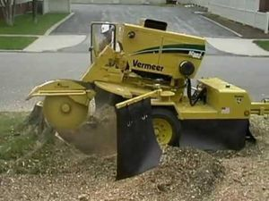 Stump grinding services available!