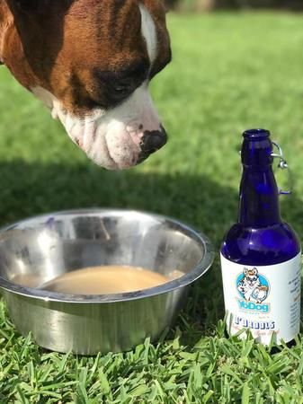 O'Drools for your pup!