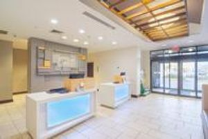 Image 2   Holiday Inn Express & Suites Tampa -Usf-Busch Gardens, an IHG Hotel