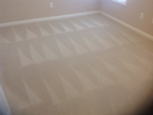 Image 5   Simply Clean Carpet Care of Nicholasville