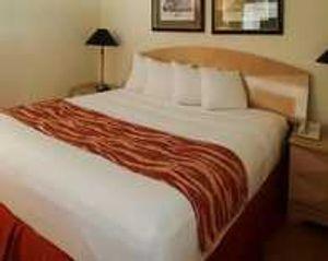 Image 3 | Rodeway Inn South Miami - Coral Gables
