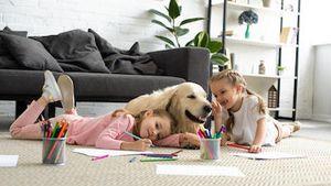 Image 5 | Riverflow Pet Clinic