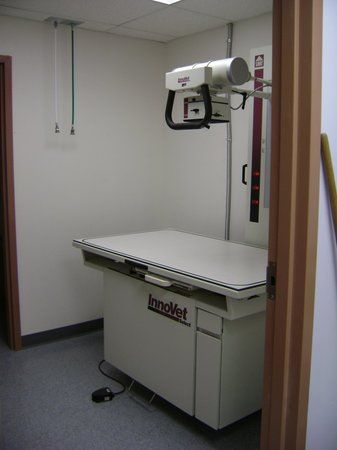 Image 4 | VCA Knightswood Animal Hospital