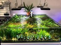 Freshwater Tank!