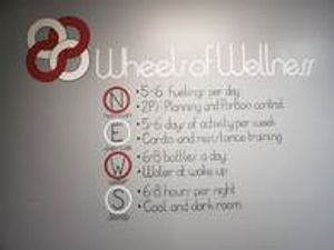 Our mantra. We use the Wheels of Wellness as the guiding forces for all of our clients!