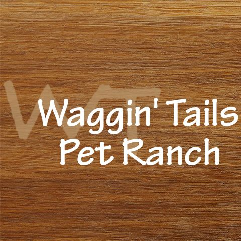 Image 1 | Waggin' Tails Pet Ranch