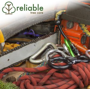Image 4 | Reliable Tree Care and Removal