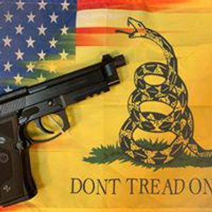 Image 9 | Hammer Down Firearms