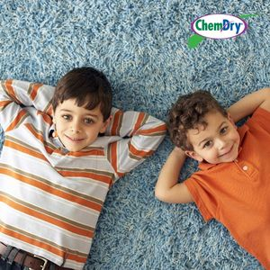 Get your carpets cleaned by Saratoga Chem-Dry! Your local carpet cleaning experts!