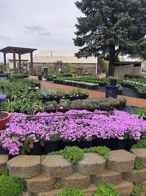 Flowers, landscaping supplies and more!