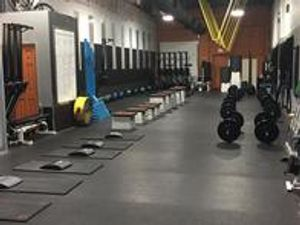 Image 2 | Iron Tribe Fitness Champions