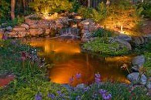 Nashville TN Koi Pond Lighting.