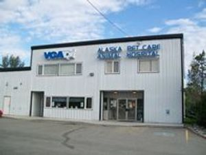 Image 9 | VCA Alaska Pet Care Animal Hospital