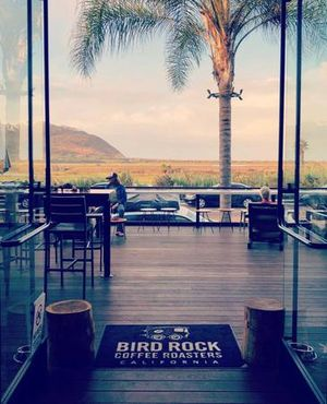 How to escape the Polar Vortex.. Come to San Diego 🙌🏻 Views from BRCR, Torrey Pines Beach😊🌴 Stay Sade out there! 📷: @mlondrav #BirdRockCoffeeRoasters #EmpoweredByGreatCoffee