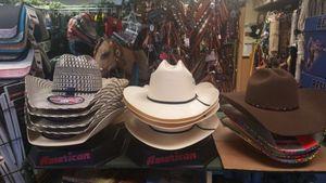 Image 10 | Moss Saddles Boots & Tack