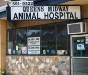Image 9 | Queens Midway Animal Hospital