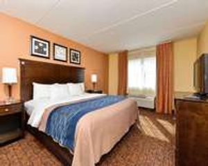 Elegantly appointed king room