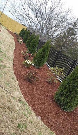 Image 4 | Cruz's Lawn & Landscaping