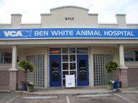 Image 9 | VCA Ben White Animal Hospital