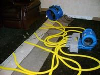 X-treme Carpet Cleaning & Water Restoration has the solution to your problem.
