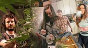 Image 2 | Verde Natural - Recreational Marijuana Dispensary