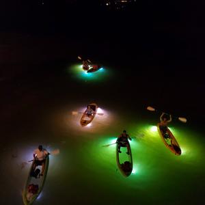 LED illuminated Glass Bottom Kayak Tours Clearwater Beach, Florida