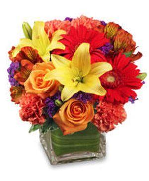 Image 8 | West End Florist