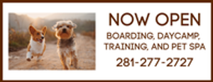 Our family-owned and operated all inclusive animal inn is the perfect place for your pet!