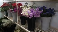 Stop in and browse our flowers, floral arrangements and gift ideas!