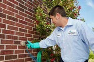 Image 5 | HomeTeam Pest Defense