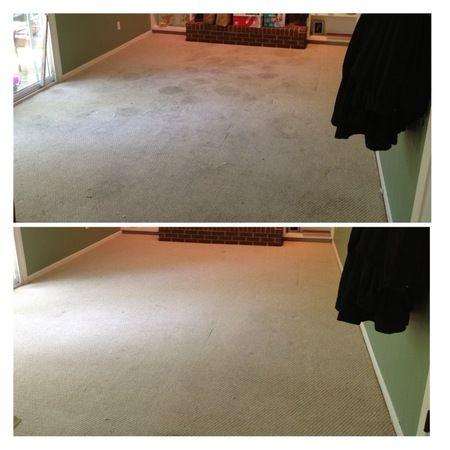 Image 4 | CitruSolution Carpet Cleaning