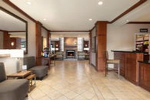 Image 5 | Staybridge Suites Tampa East- Brandon, an IHG Hotel
