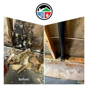 Image 7 | Executive Pro-Dry Water, Sewage & Mold Remediation