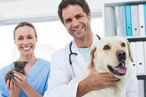 Give us a call and experience the difference we provide in veterinary care!