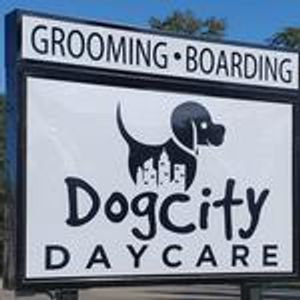 Image 1 | Dog City Daycare