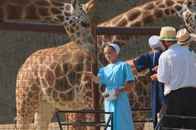 A magical place where you'll meet giraffes, camels, kangaroos, zebras and a host of other exotic animals up close.