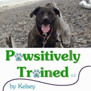 Image 6 | Pawsitively Trained LLC