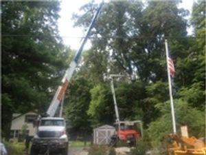 Image 2 | Aspen Heights Tree Service Inc