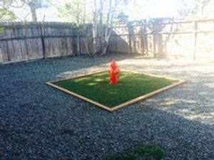 One of the two play areas at VCA Alpine Animal Hospital