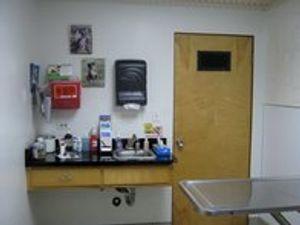Image 8 | VCA Blossom Hill Animal Hospital