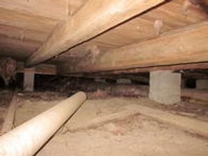 Crawl space debris removal Bloomington, Indiana Yes Pest Pros