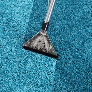 Residential  Carpet Cleaning Services in Albuquerque & Santa Fe