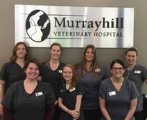 The caring and experienced team at VCA Murrayhill Veterinary Hospital!
