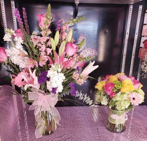 Image 3   Acacia Flowers