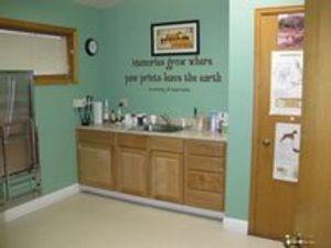 Image 7 | VCA East Anchorage Animal Hospital