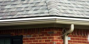 Considering a Clean-Free Gutter System? Only go With the Best!